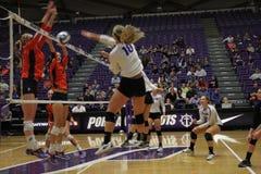 University of Portland volleyball Royalty Free Stock Photo