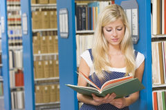 University student working in library. University student reading book in library stock photography