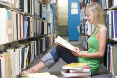 University student working in library. Female student sitting on library floor surrounded by books Stock Photos