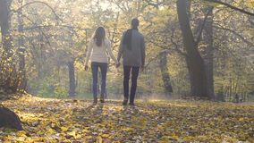 University students enjoying a walk in park after classes, romantic relationship. Stock footage stock video footage