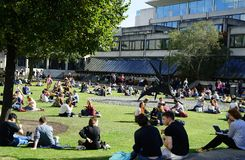 University students relaxing in the quad stock images