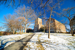 University of tennessee. The University of Tennessee during snow time stock images
