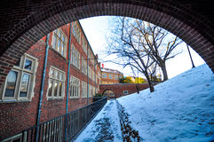 The University of Tennessee. During snow time royalty free stock images