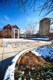 The University of Tennessee. During snow time royalty free stock photo