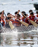University of Toronto\'s Victoria College. University of Toronto's Victoria College Paddling Club Dragon Boat racing at the21st TELUS Toronto International Royalty Free Stock Images