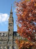 University Tower & Fall Foliage Stock Photo