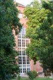 University Tree in garden Stock Photos