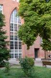University Tree in garden Stock Images