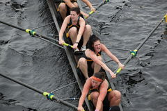 The University of Vermont Women. BOSTON - OCTOBER 24: The University of Vermont Women compete in the Head of the Charles Regatta  on October 24, 2010 in Boston Royalty Free Stock Image