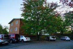 University of Virginia. Campus building in Charlottesville, VA, USA stock image