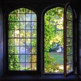 University Windows Stock Photography
