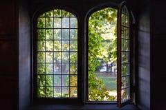 University Windows Stock Photo