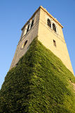University of Wisconsin. Historic tower in Madison stock photos