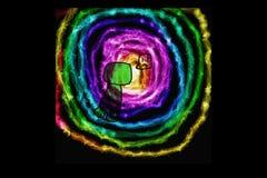 Universo da trepadeira, vindo à luz Fotos de Stock