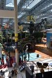 Universo de Nickelodeon em Bloomington, Minnesota Fotografia de Stock