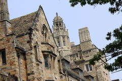 uniwersytecki Yale Obrazy Royalty Free
