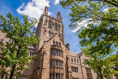 Uniwersytetów Yale budynki w lata niebieskim niebie w Nowej przystani, CT USA Obrazy Royalty Free