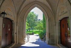 Uniwersytet Chicago zdjęcia stock