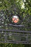 uniwersytet princeton Obrazy Stock
