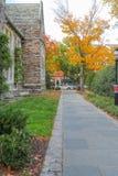 Uniwersytet Princeton jest Intymnym bluszcza liga uniwersytetem w Nowym - bydło, usa Zdjęcie Royalty Free