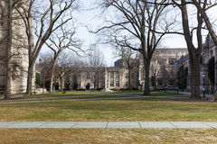 Uniwersytet Princeton Kampus Zdjęcie Stock
