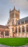 Uniwersytet w Cambridge drzewa sąd Obraz Stock