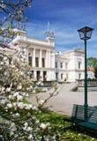 uniwersytet wiosna Zdjęcia Stock