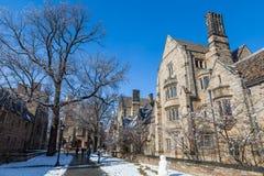 Uniwersytet Yale Zdjęcia Royalty Free