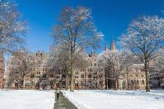 Uniwersytet Yale Obrazy Stock