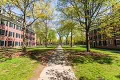 Uniwersytet Yale w Nowej przystani Connecticut Zdjęcie Stock