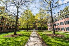 Uniwersytet Yale w Nowej przystani Connecticut Fotografia Stock