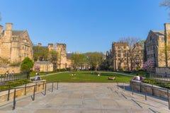 Uniwersyteta Yale kampus Obrazy Royalty Free