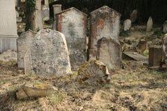 unkempt kyrkogårdkyrkogård royaltyfri bild