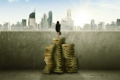 Unknown businesswoman looking at her future. Back view of an unknown businesswoman is carrying briefcase while standing on pile of books and looking at her Stock Photos