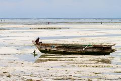 Unknown child on fishing boat in low tide. ZANZIBAR, TANZANIA - JANUARY 05: Unknown child on a fishing boat in low tide ocean on Paje beach, Zanzibar, Tanzania Stock Photo