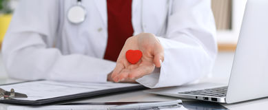 Unknown female doctor with stethoscope holding heart. Children`s cardiology and medical care, stop abortation concept royalty free stock photos