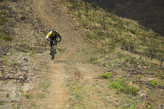 Unknown racer on the competition of mountain bike Royalty Free Stock Image