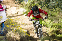 Unknown racer on the competition of mountain bike Stock Photos