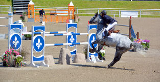 Unknown rider on a horse. BROMONT-CANADA JULY 29: Unknown rider on a horse during 2017, INTERNATIONAL BROMONT on July 29, 2017 At the Equestrian 1976 Montreal Stock Images