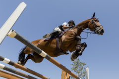 Unknown rider on a horse during competition matches riding round Stock Images