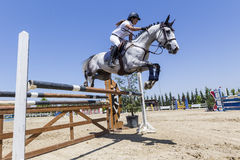 Unknown rider on a horse during competition matches riding round Stock Photography