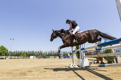 Unknown rider on a horse during competition matches riding round Royalty Free Stock Photo