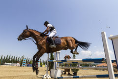 Unknown rider on a horse during competition matches riding round Stock Photos