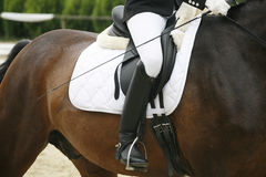 Unknown rider sitting on a dressage horse Stock Photo