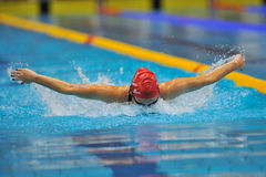 Unknown swimmer competing Royalty Free Stock Image