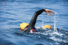 Unknown Swimmer at sea. Royalty Free Stock Image