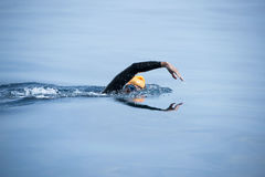Unknown Swimmer at sea. Royalty Free Stock Photography