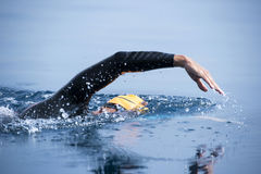 Unknown Swimmer at sea. Stock Image