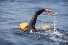 Unknown Swimmer at sea. Stock Photo
