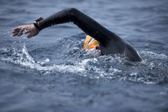 Unknown Swimmer at sea. Royalty Free Stock Photos